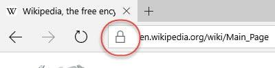 Secured website Edge