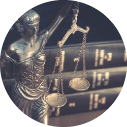 Litigation Cover
