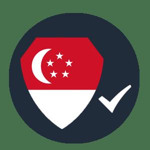 Best Singapore VPNs Conclusion