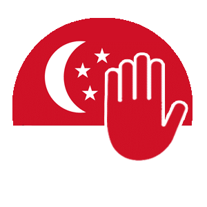 Using a VPN in Singapore Considerations
